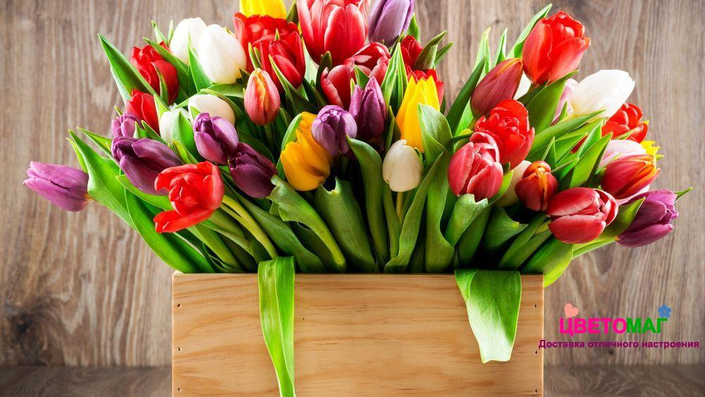 Ящик с 35 тюльпанами микс