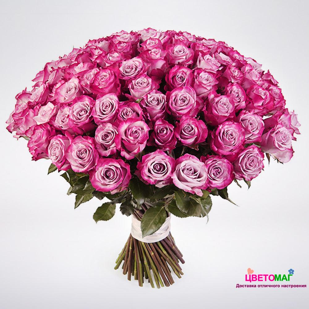 Красивый букет из миллиона розовых роз