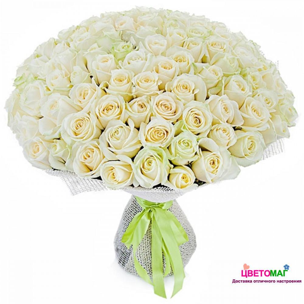 Букет 101 роза 1 Creme de la Creme (Эквадор)