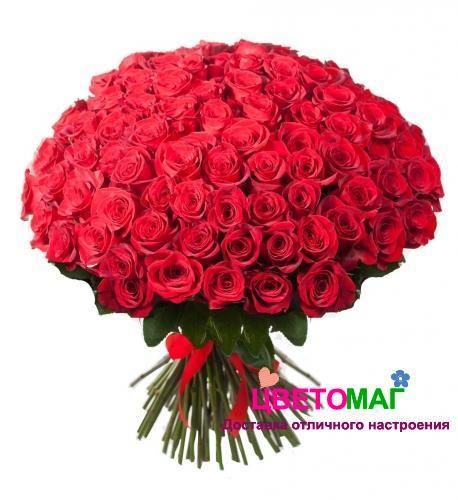 Букет из 101 красной розы  Freedom 70 см (Эквадор)