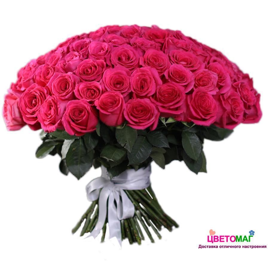 Букет 101 розовая роза Pink Floyd 50 см (Эквадор)