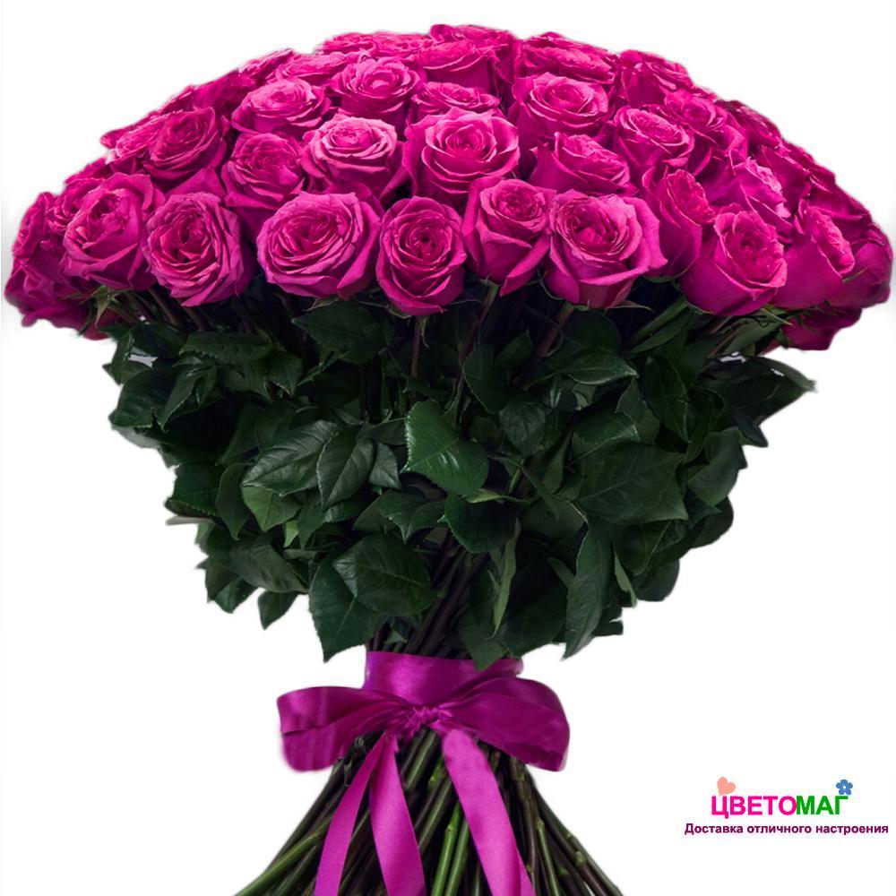 Букет 101 розовая роза Pink Floyd 70 см (Эквадор)