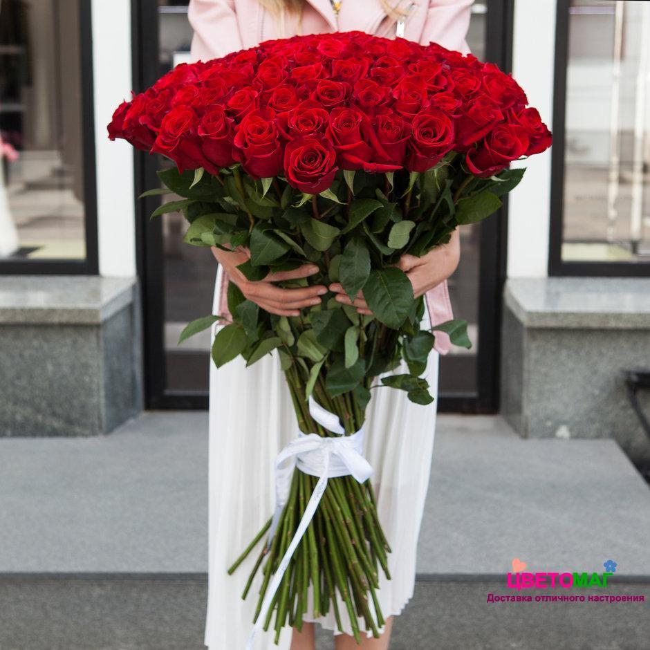 Композиции, 101 роза спб дешево 80 см
