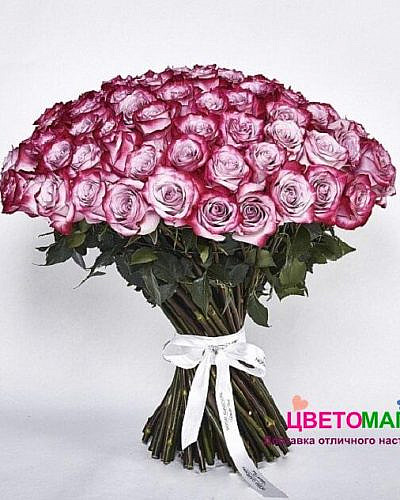 Букет 101 роза Deep Purple 60 см (Эквадор)