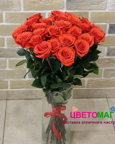 Букет из 25 алых роз Nina 60 см (Эквадор)