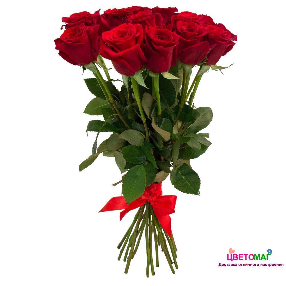 Букет из 11 красных роз  Freedom 60 см (Эквадор)