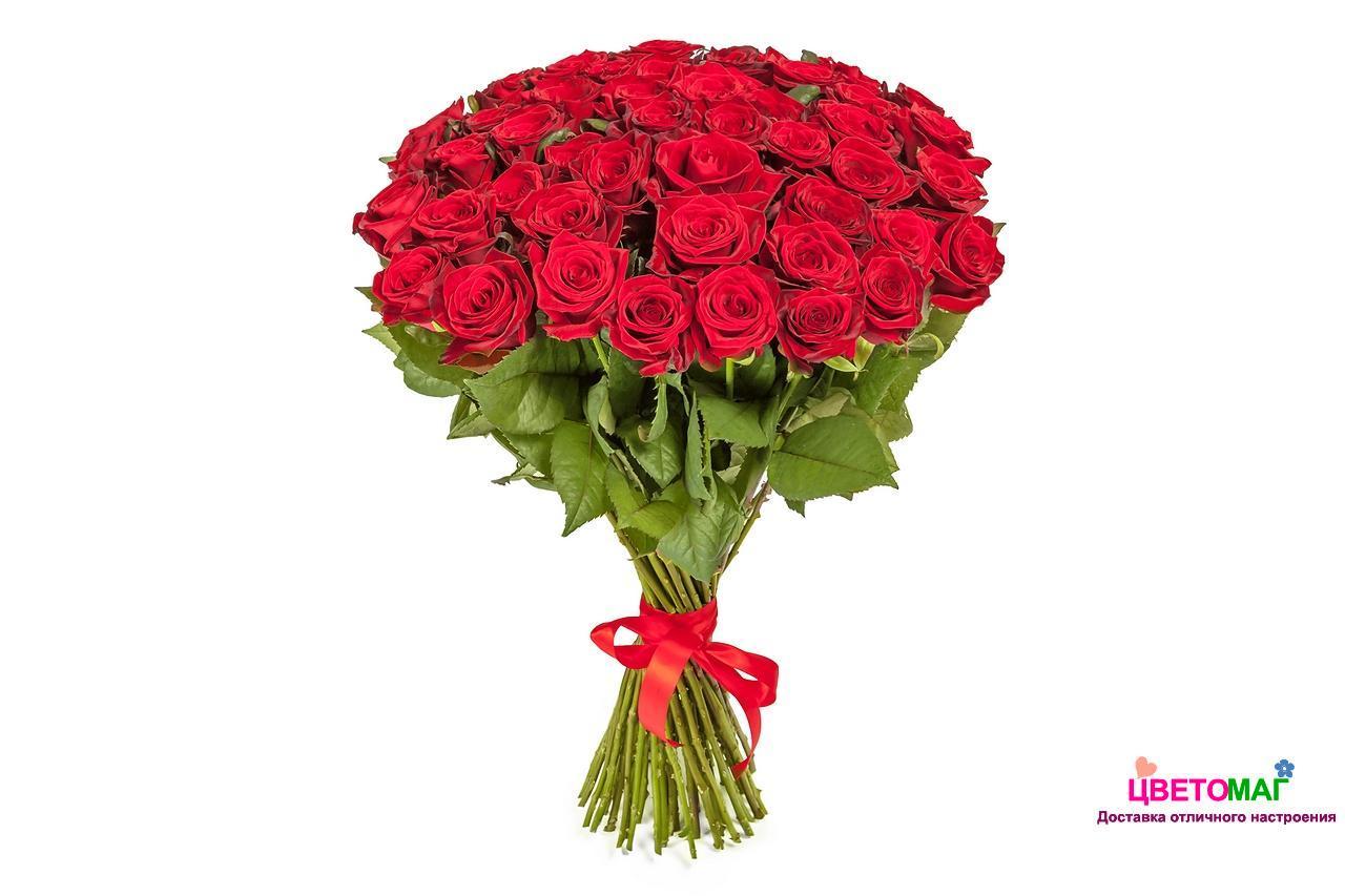 Букет из 51 красной розы  Freedom 70 см (Эквадор)