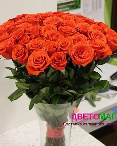 Букет из 51 алой розы Nina 60 см (Эквадор)