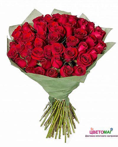 Букет из 55 красных роз Freedom 60 см (Эквадор)