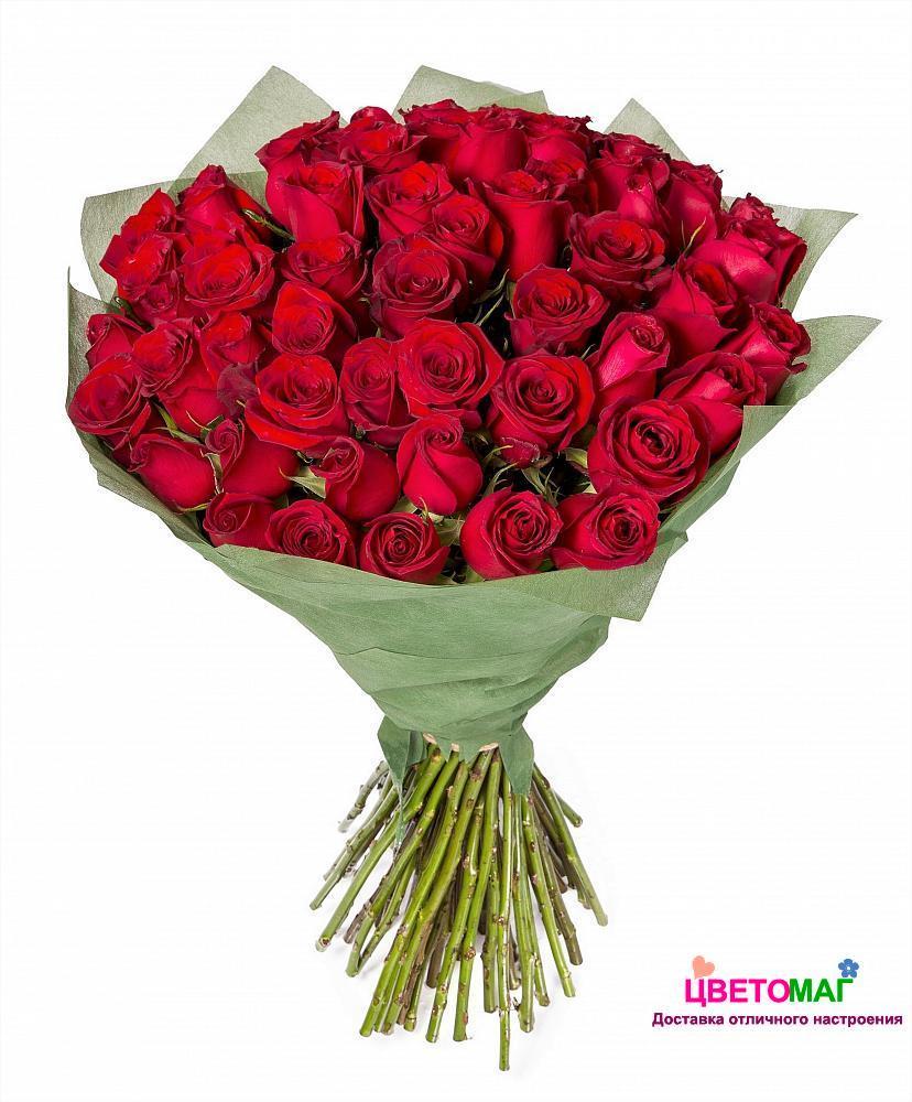 55 розы с доставкой спб