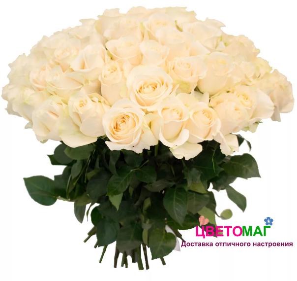 Букет 65 белых роз Vendela 50 см (Эквадор)