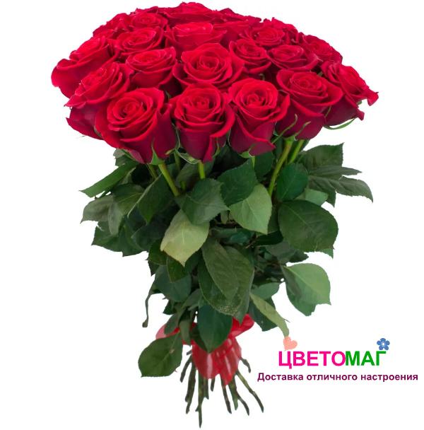 Букет из 25 красных роз  Freedom 70 см (Эквадор)