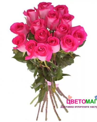 Букет 15 розовых роз Pink Floyd 60 см (Эквадор)