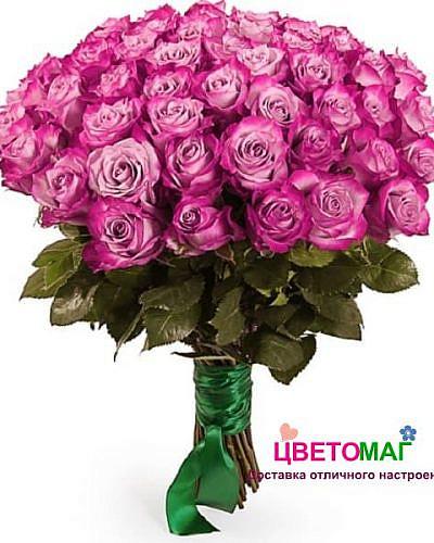 Букет 51 роза Deep Purple 50 см (Эквадор)