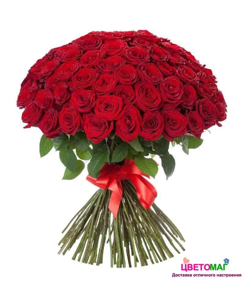 Букет зимой, купить 100 розы с доставкой по беларуси