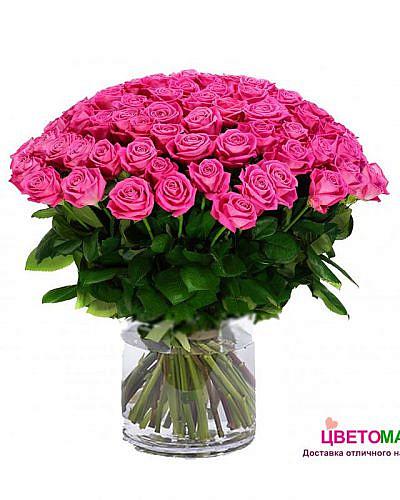Букет 101 розовая роза Pink Floyd 60 см (Эквадор)