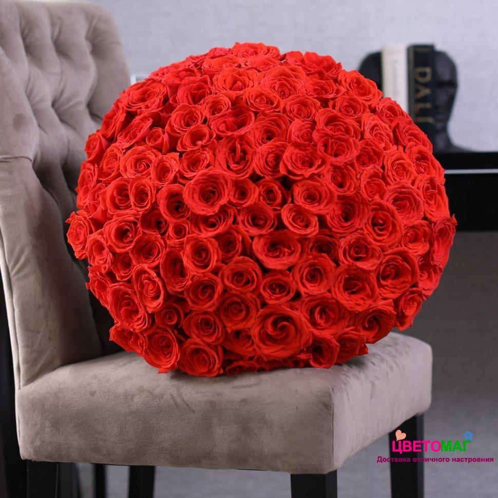 Букет из 101 алой розы  Nina 60 см (Эквадор)