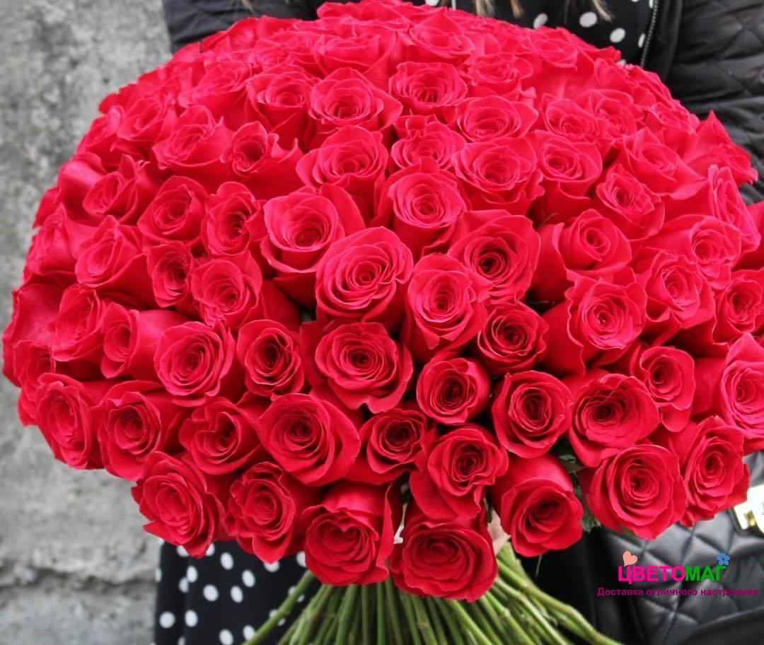 Букет из 101 красной розы  Freedom 80 см (Эквадор)