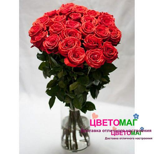 Букет из 35 алых роз Nina 60 см (Эквадор)