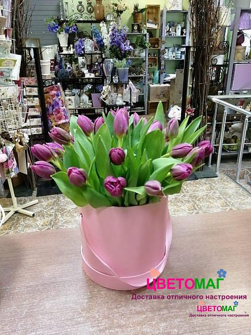 Коробка из 25 фиолетовых тюльпанов