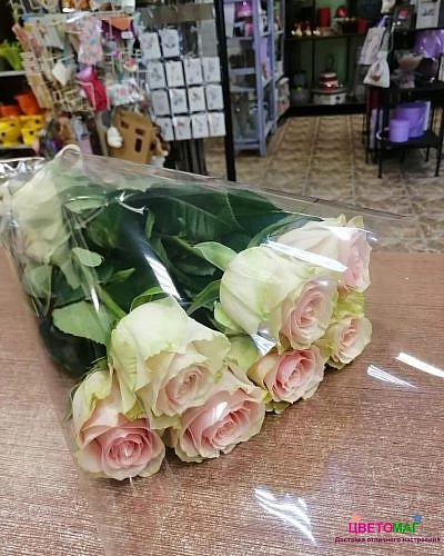 Букет 7 розовых роз Esperance 70 см (Эквадор)