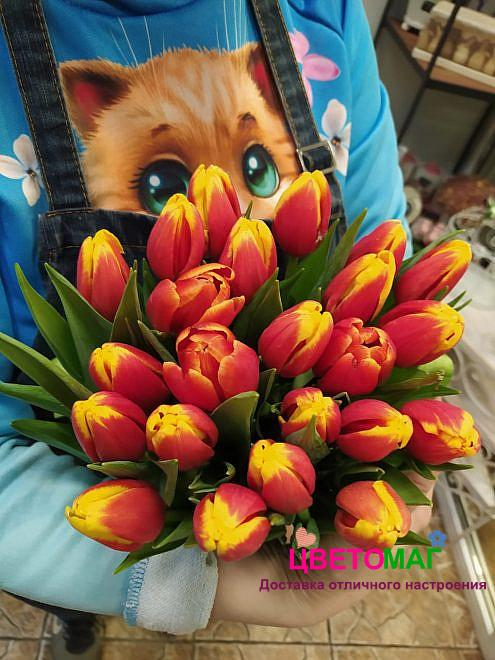 Букет из 23 красно-желтых тюльпанов