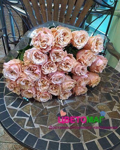 Букет 25 розовых роз Shimmer 70 см (Эквадор)